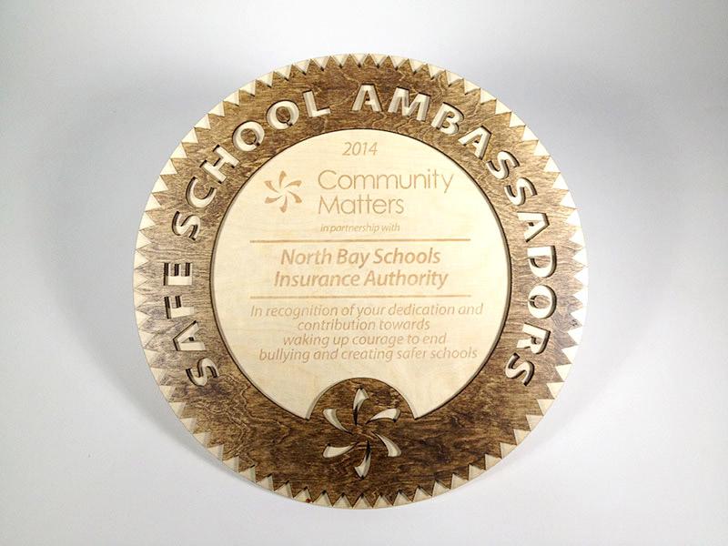 award-SafeSchoolAmbassadors-1