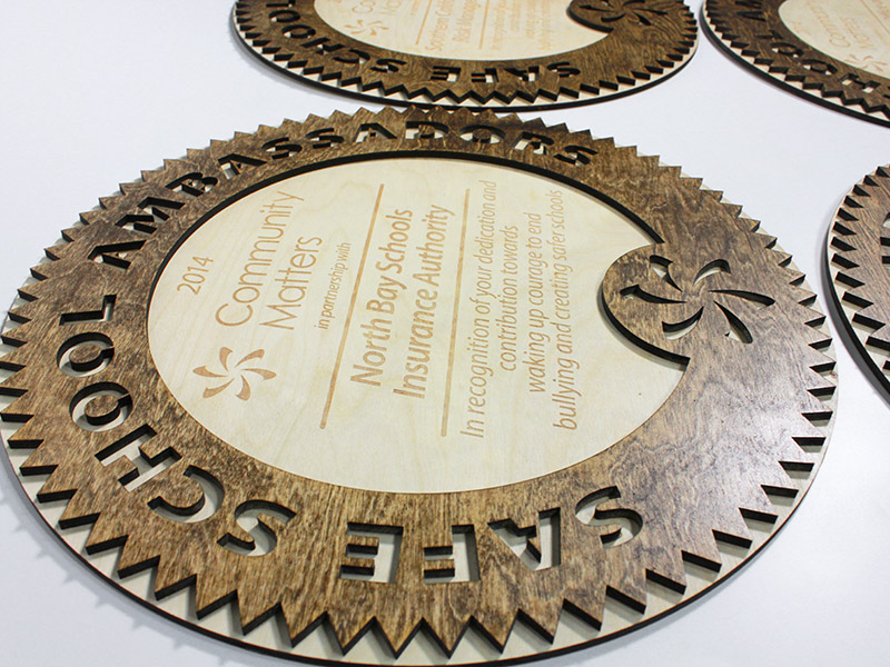 award-SafeSchoolAmbassadors-3