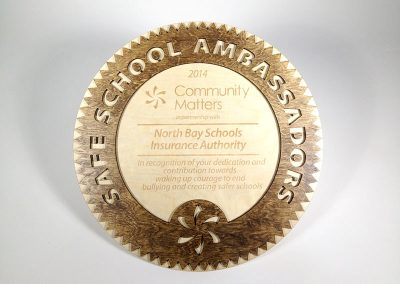 Safe School Ambassadors Award