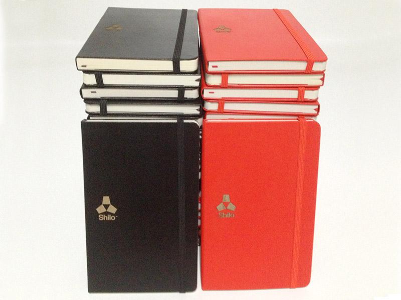 promo-shilo-books