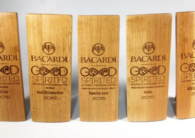 Bacardi – Good Spirited Awards