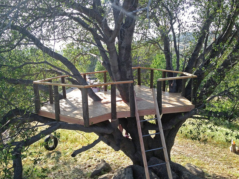 furniture-treehouse